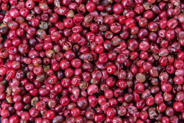 Rosa Beeren Pfeffer aus Brasilien 100 g