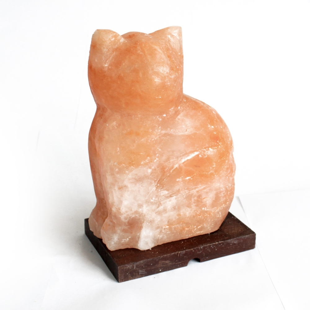 Salzlampe – Katze (Holzsockel)