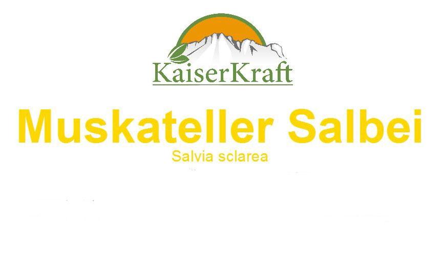 Muskateller-Salbei - Ätherisches Öl