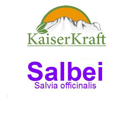 Salbei - Ätherisches Öl
