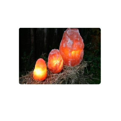 Salzlampe mit Holzfuß, mit CE-Elektrik 7 - 8 kg