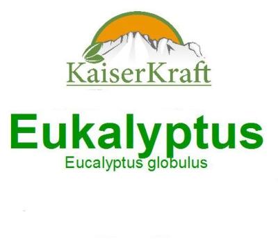 Eukalyptus - Ätherisches Öl