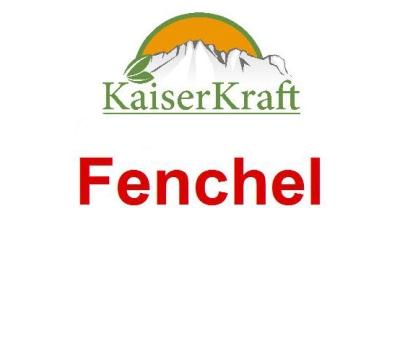 Fenchel - Ätherisches Öl