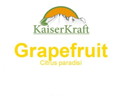 Grapefruit - Ätherisches Öl