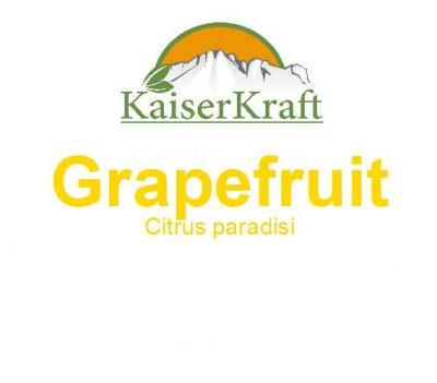 Grapefruit - Ätherisches Öl