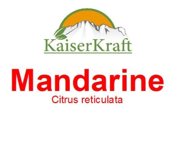 Rote Mandarinen - Ätherisches Öl