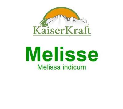 Melisse (Indicum) - Ätherisches Öl