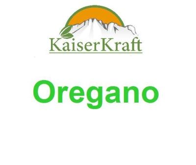 Oregano - Ätherisches Öl