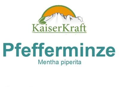 Pfefferminze - Ätherisches Öl