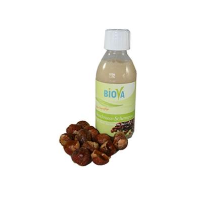 Biova Waschnuss Shampoo 200 ml
